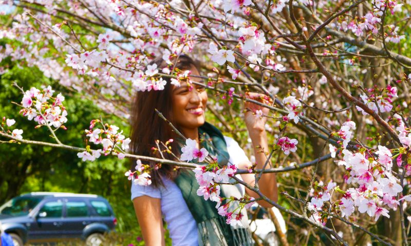 Travel did not heal my broken heart   Catching Carla - The Traveling Filipina